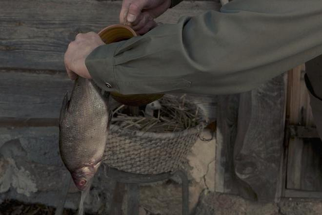 Vītināta zivs